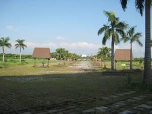 屏東熱帶農業示範園區現況