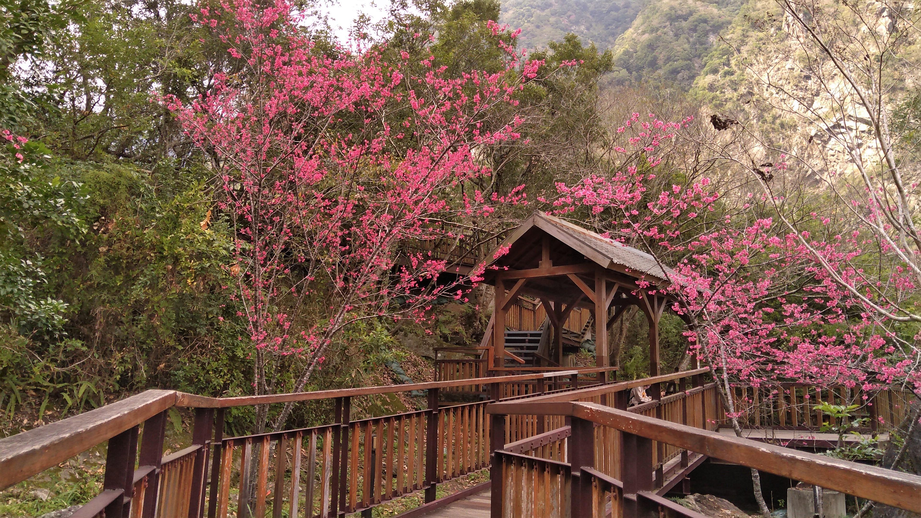 布洛灣環流丘景觀公園涼亭