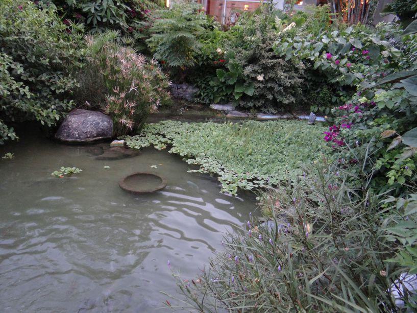 台東聖母醫院的療癒花園