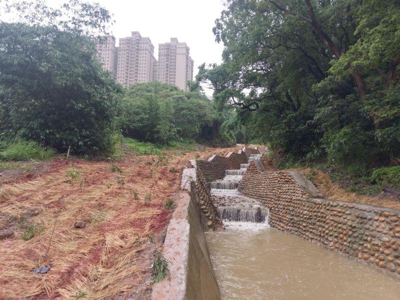 銜接水路施作及植生護坡