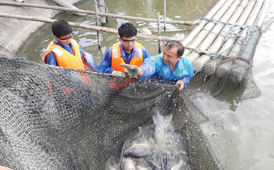 前總統主廚李宗銘(右)帶領新住民子女現撈上青的鯛魚,感受漁家的辛勞及收成的喜悅。