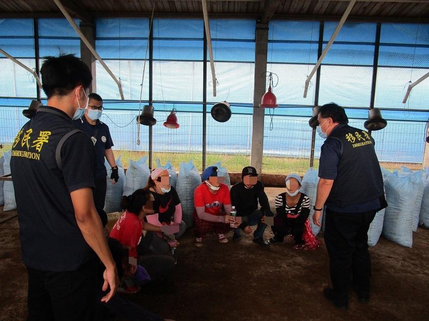 移民署南區事務大隊嘉義縣專勤隊於養雞場查獲非法移工現場情形。