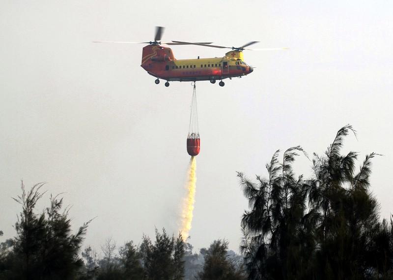 Firefighting in the woods near National Chi Nan University, Nantou on May 17 2015.jpg