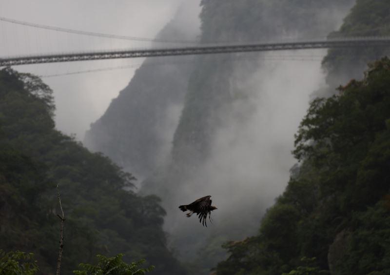 背景是山月吊橋喔~(.jpg)