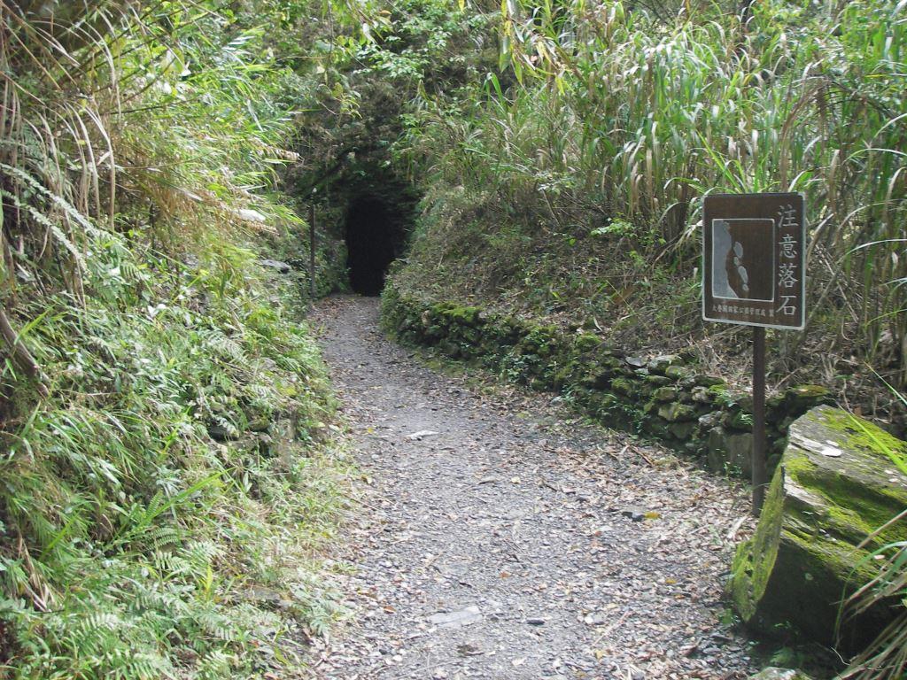 綠水步道小山洞(.jpg)