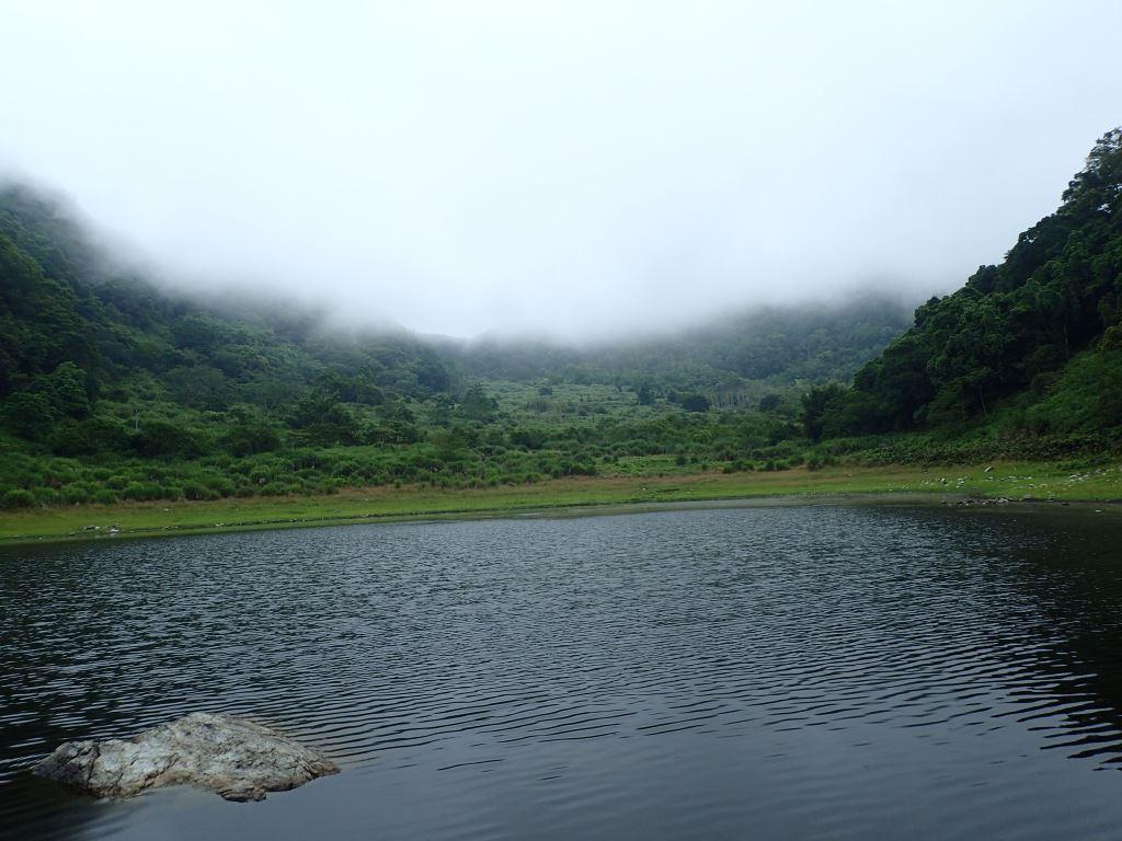 蓮花池步道美景(.jpg)