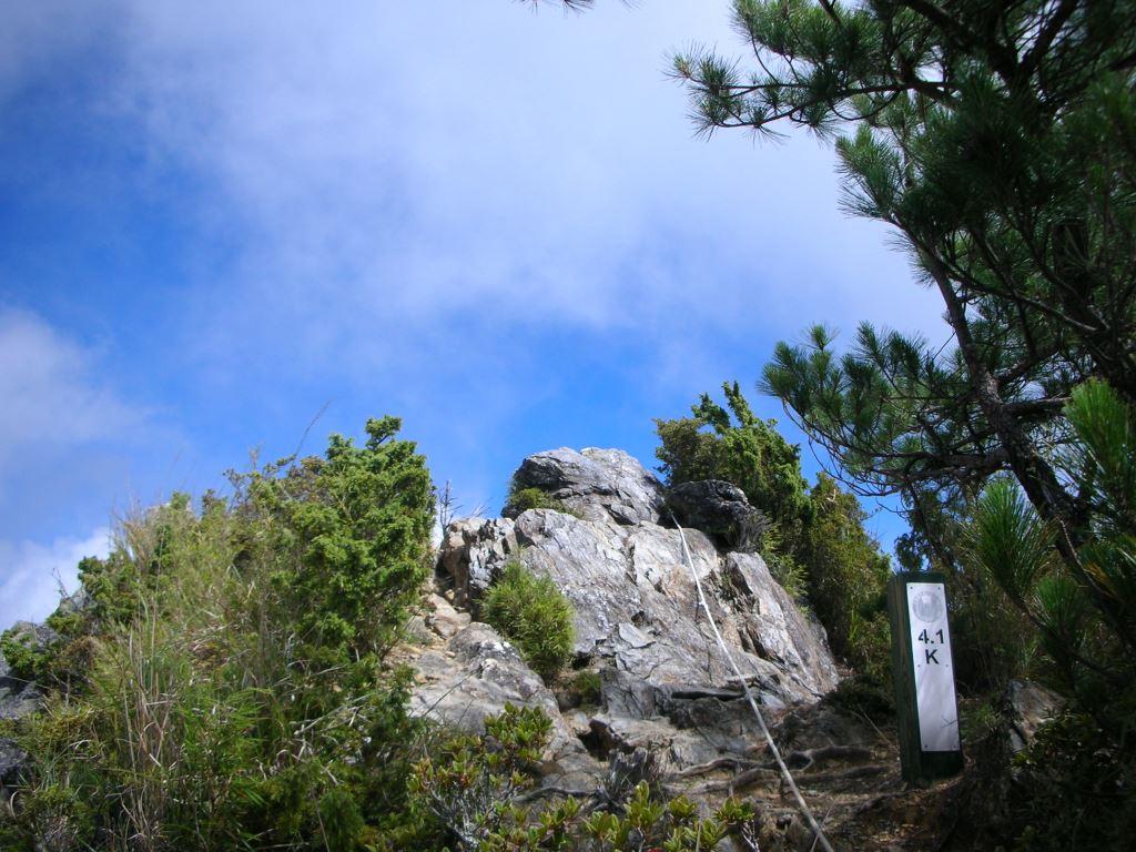 羊頭山步道4.1K處景色(.jpg)