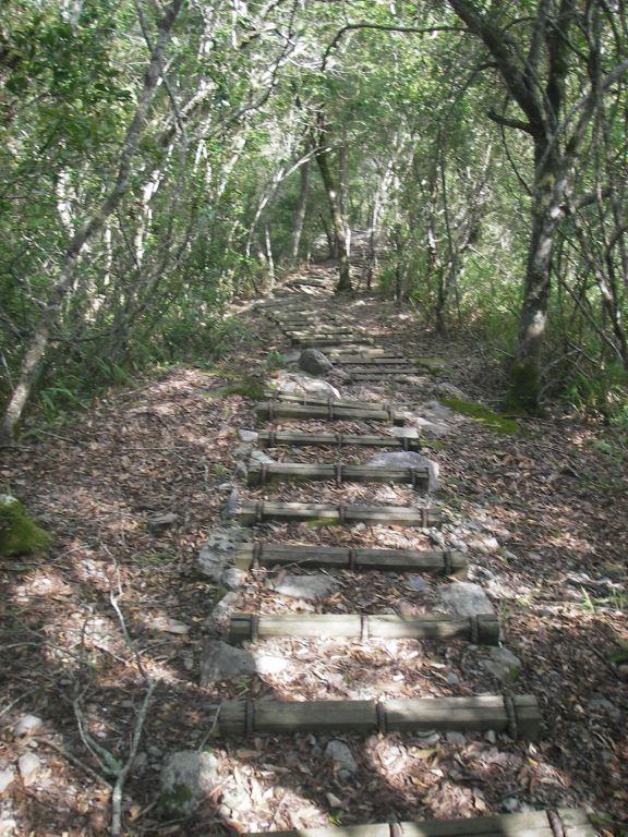 山林水秀的綠水文山步道(.jpg)