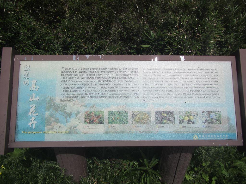 高山花卉介紹圖(.jpg)