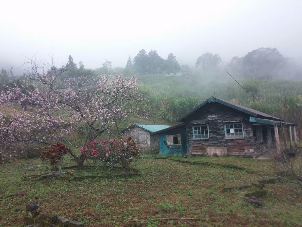 Truku Tribe Traditional House (.jpg)
