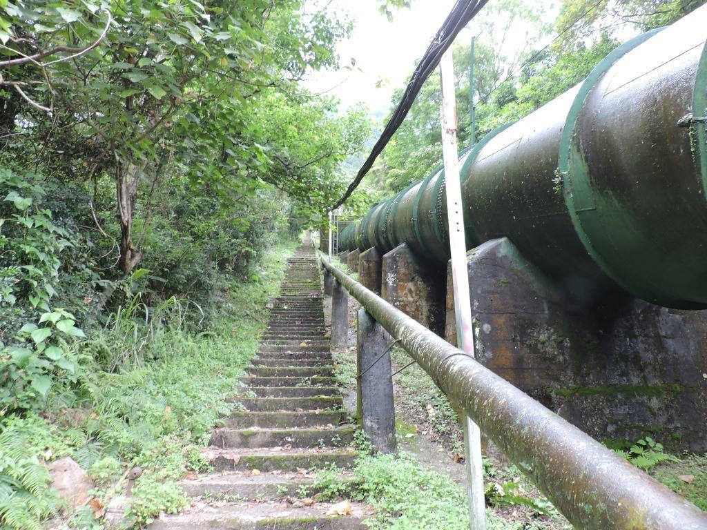 Water Pipe Road Section- East trailhead (.jpg)