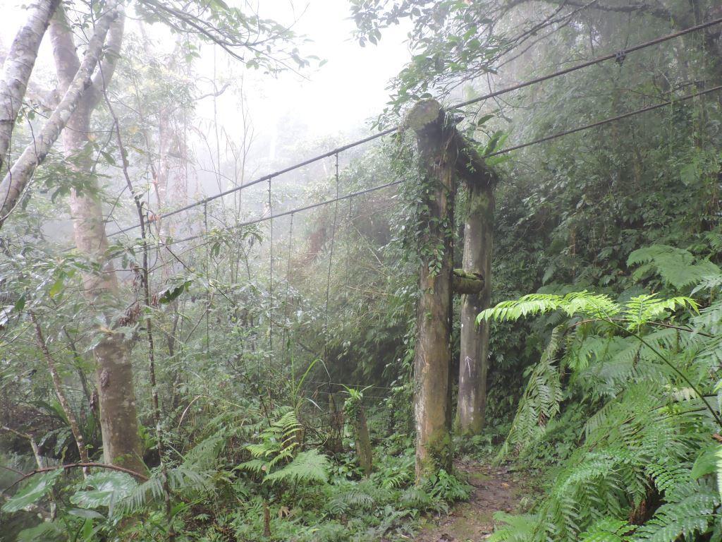 Dali Trail-Old Suspension Bridge