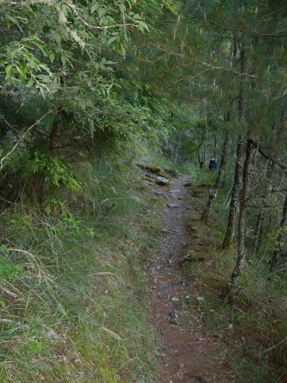 Mt. Bilu Trail