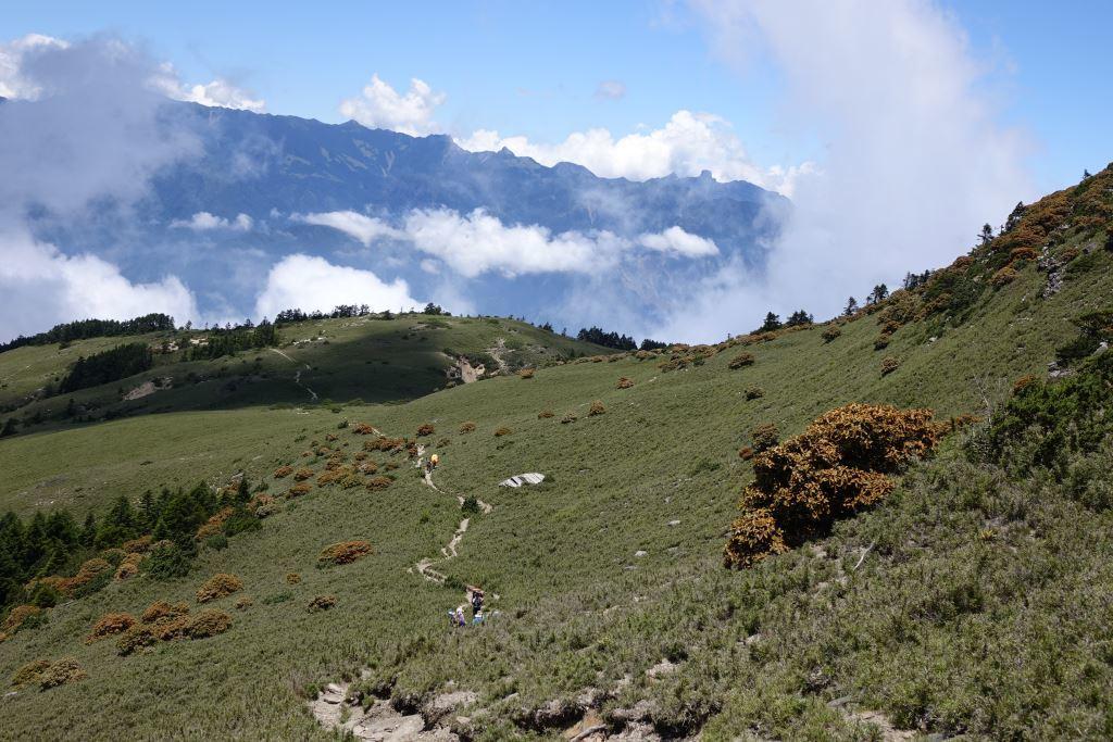 Nanhu Dashan Grassland