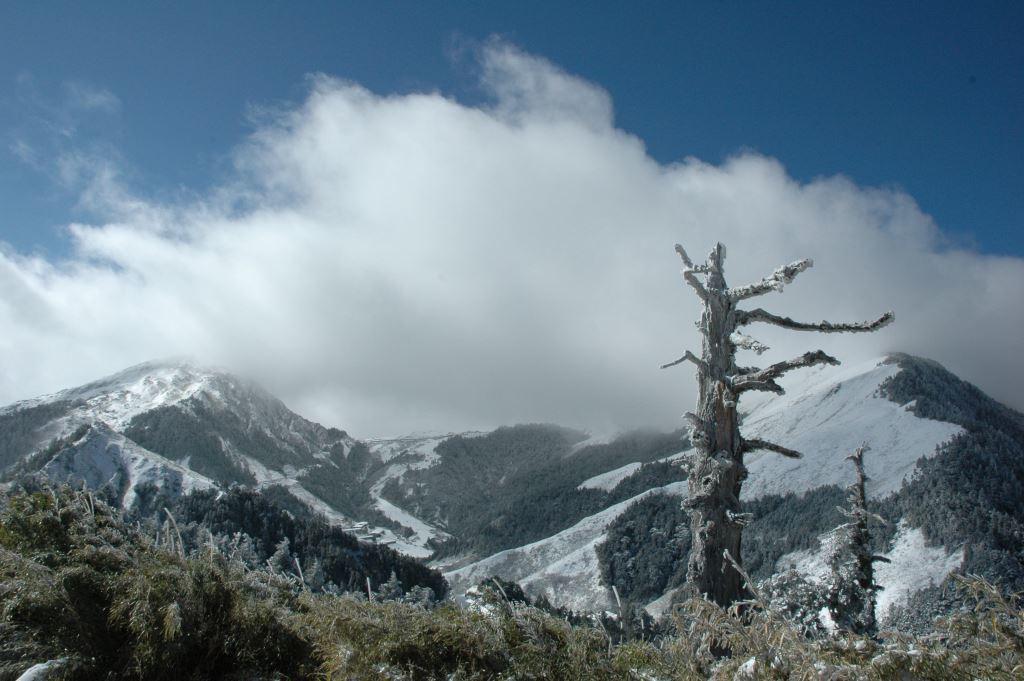 Snow at Mt. Hehuan Area(.jpg)