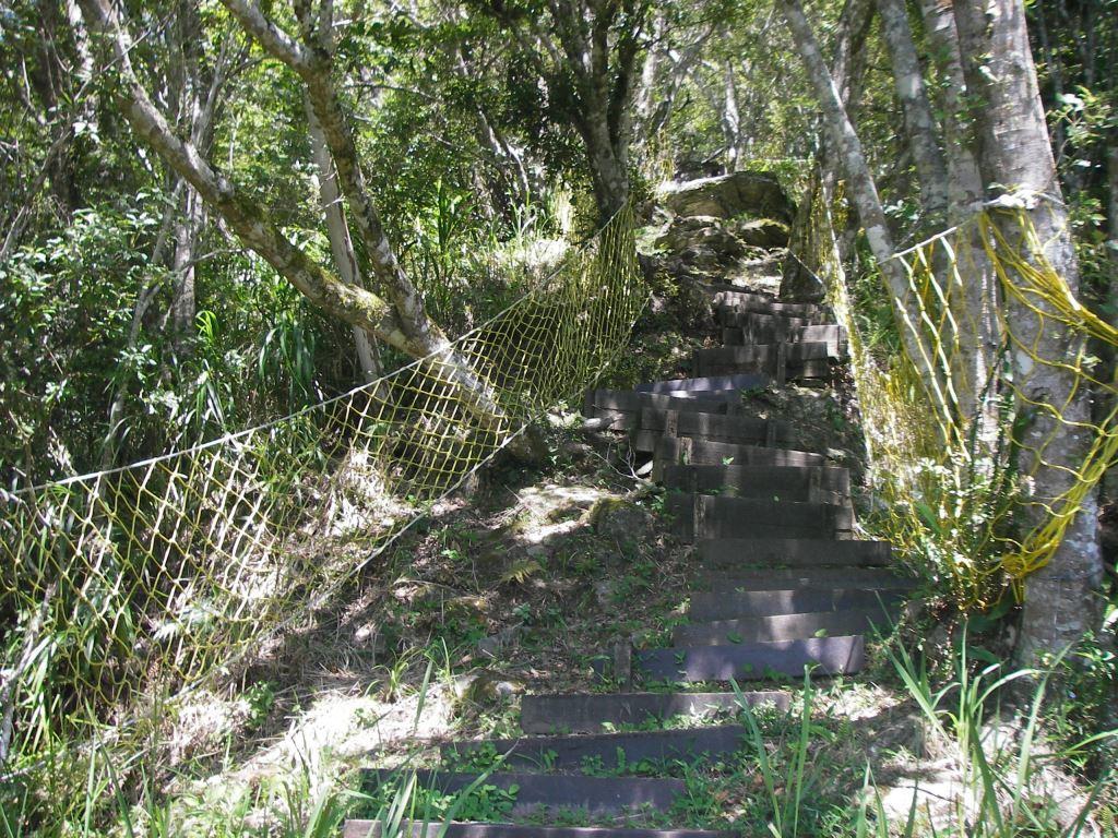 Wooden Stairs(.jpg)