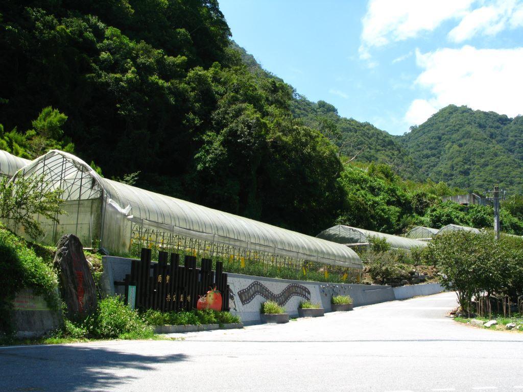 Farm Greenhouse at Xibao(.jpg)
