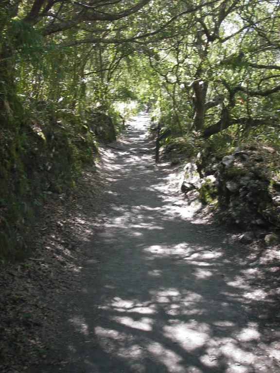Trail section near Commemorating Spirits Monument(.jpg)