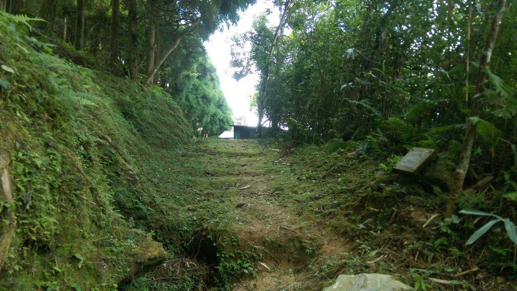 Village Road around Dali(.jpg)
