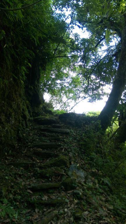 Stone Steps(.jpg)