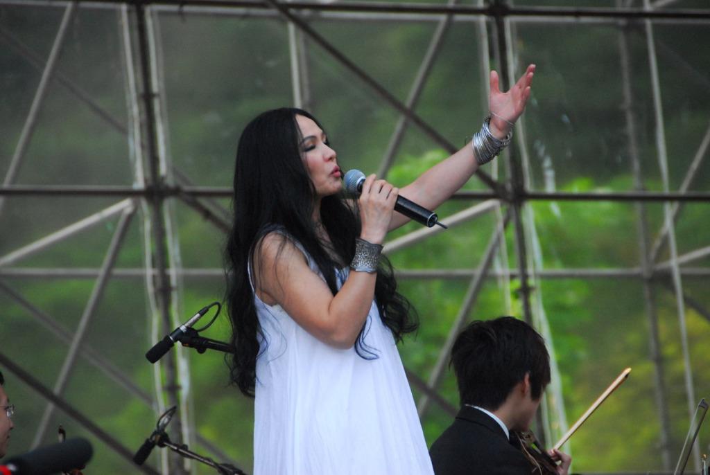 2010峽谷音樂節(.jpg)