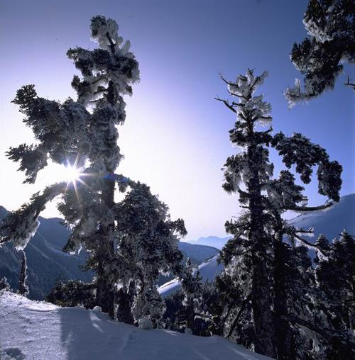 皚皚白雪的合歡山(.jpg)