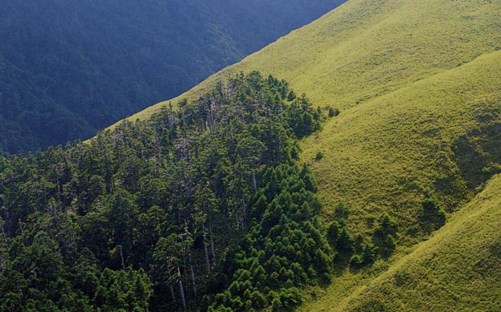 第一站-「森林界線」與「母雞效應」(.jpg)