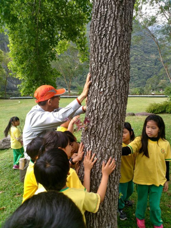 森林的五感體驗大小朋友都受益良多(.jpg)