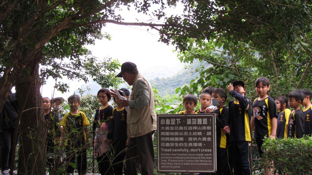 和平國小環境教育圖片共6張-森林探索趣(.jpg)