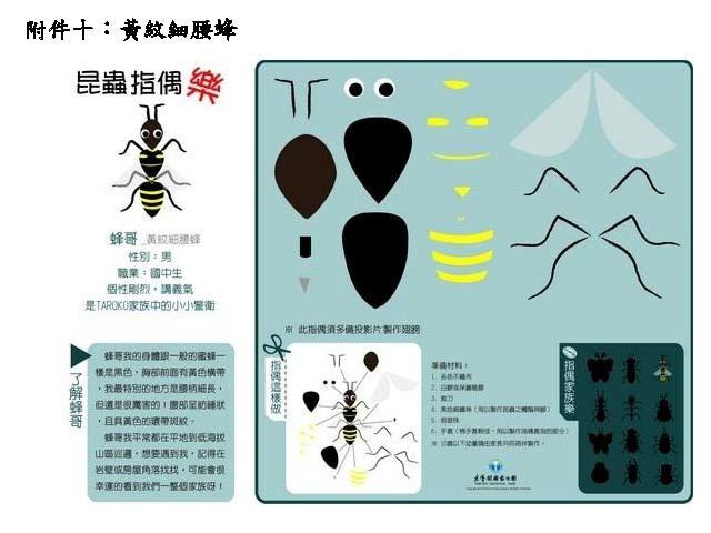 黃紋細腰蜂(.jpg)